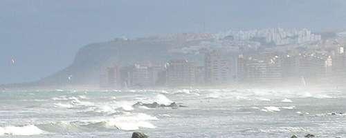 Noticias natur licante - Cabo santa pola ...